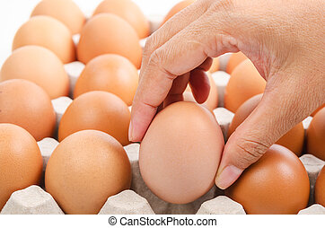 Person choosing the best egg. - Person choosing the best egg...
