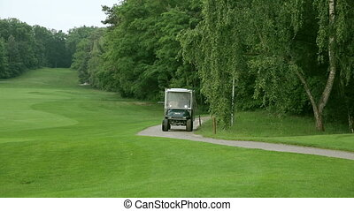 person drives by with a golf car