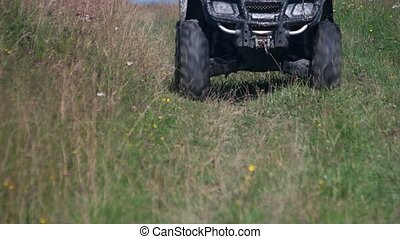 Person driving quad bike on green grass.