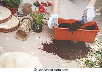 Person fertilizing soil in container - Person with gloves on...