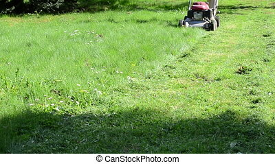 person grass lawn mower - Person walk behind lawn mower on...