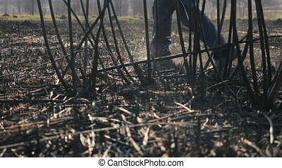 Person in galoshes walks on burnt grass and tree branches after a serious fire in sunny spring weather, a view from a branch. Man walks on burnt earth and ashes in a deserted field. Damage to nature.