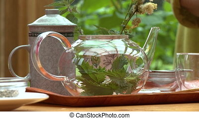 Person Putting Leaves and Sprigs in Kettle - Steady,...