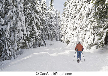 Person snowshoeing in winter landscape
