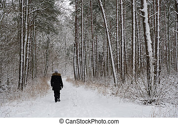 Person walking in a snowy forest