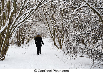 Person walks in a snowy landscape