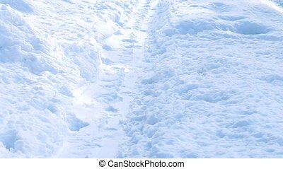 Person Walks On Path In The Snow