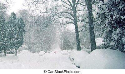 Person Walks On Road In Blizzard