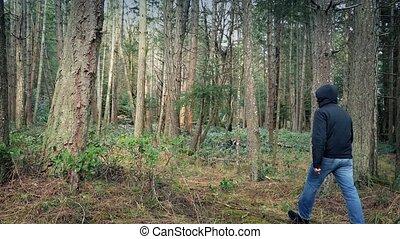 Person Walks Through Woodland - Man walks through rugged...