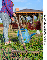 Person weeding a vegetable patch in spring