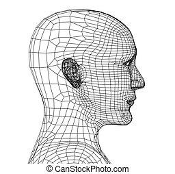 persona, cabeza, cuadrícula, 3d