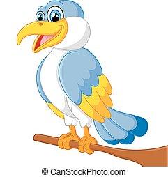 personagem, pássaro, caricatura