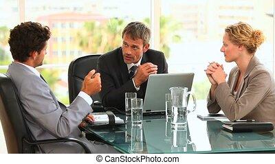 persone affari, talkinig, circa