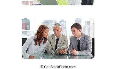 persone affari, usando, uno, laptop
