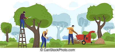 persone, albero, giardiniere, lavorante, appartamento, giardino, vettore, lavorativo, cespuglio, cartone animato, lavoro, macchinario, guarnizione, potatura, verde, illustrazione, giardinaggio