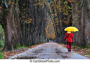 persone camminando, in, lungo, vicolo, a, cadere, autunno,...