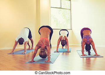 persone, classe, attivo, yoga, cane discendente, atteggiarsi
