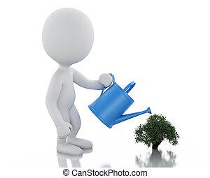 persone, irrigazione, albero, piccolo, bianco, 3d