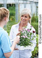 personeel, geven, plant, raad, om te, vrouwlijk, klant, op, het centrum van de tuin