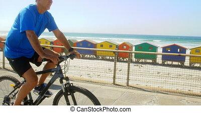 personne agee, côté, actif, vue, bicyclette voyageant, caucasien, promenade, homme, plage, 4k