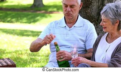 personne agee, délassant, couple, parc