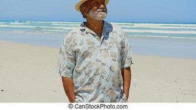 personne agee, debout, actif, africaine, mains, vue, poche, américain, homme, plage, 4k