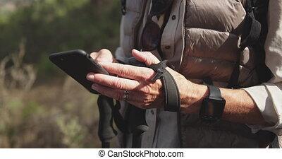 personne agee, fin, vue, forêt, lever, femme, smartphone