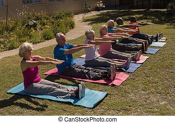 personne agee, gens, parc, exercisme, groupe