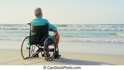 personne agee, handicapé, vue, arrière, regarder, homme, 4k, plage