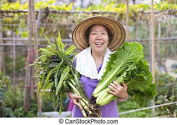 personne agee, légumes, femme, paysan