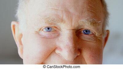 personne agee, maison, confortable, regarder, caucasien, homme appareil-photo, 4k, gros plan