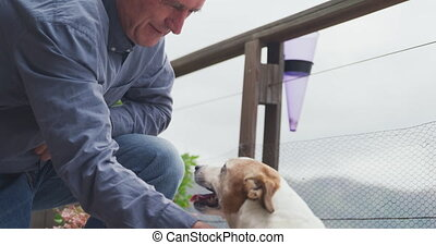 personne agee, maison, sien, terrasse, homme, chien