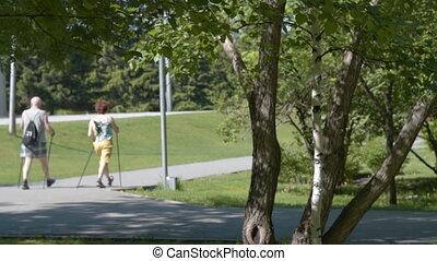 personne agee, marche, parc, couple, nordique