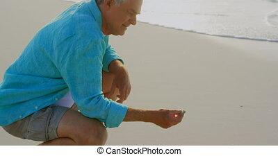 personne agee, seashell, côté, actif, vue, tenue, caucasien, homme, plage, 4k