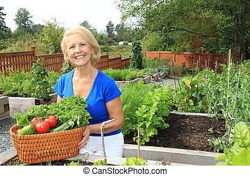 personne agee, vegetables., jardinier