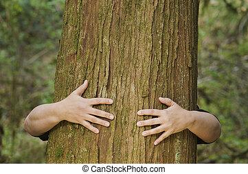 personne, arbre, étreint