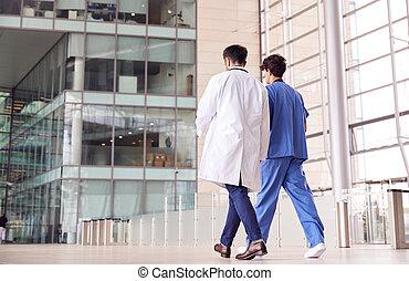 personnel, monde médical, arrière, mâle, vue, conversation, ...