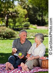 personnes âgées accouplent, pique-niquer, dans jardin