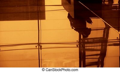 Person's shadow,Figure reflection