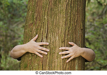 persoon, omhelzingen, een, boompje