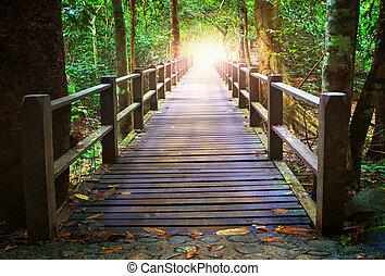 perspectiva, de, madera, puente, en, profundo, bosque,...