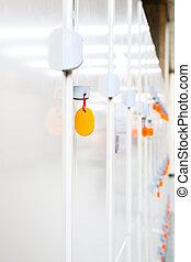 locker storage row cabinet