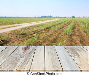 Perspective wood with blurred agriculture field background, for product display montage