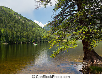 perspektywa, cottonwood, kolorado, buena, jezioro