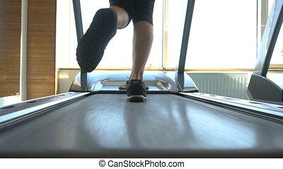 perte, jambes, but, poids, personne, club, activité, dos, oriented, fitness, gym., courant, exercices, femme, tapis roulant, sport, cardio, sain, inspiration., vue