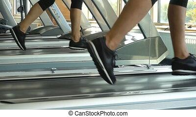 perte, jambes, but, poids, personne, club, tapis roulant, oriented, fitness, gym., courant, activité, exercices, femme, miroir, refléter, sport, cardio, sain, inspiration.