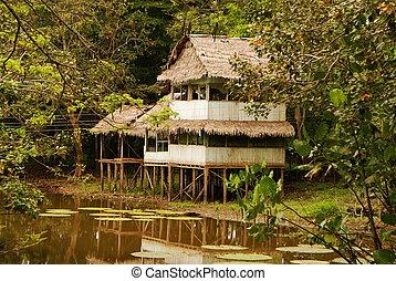 Peru, Peruvian Amazonas landscape. The photo present typical...