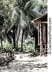 peru, peruwiański, amazonas, krajobraz., przedimek określony przed rzeczownikami, fotografia, niniejszy, typowy, indianin, plemiona, osada, w, amazonka