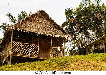 peruanisch, landschaft., amazonas, peru