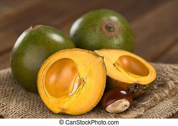 peruansk, frukt, kallat, lucuma